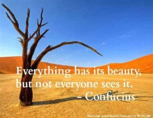 Quote by Confucius on beauty